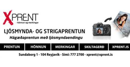 GSM-hulstur-50%